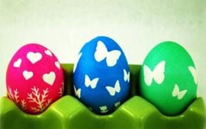 egg4d
