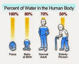 water-human-body