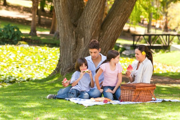 family-picnic-at-park_z3myoi